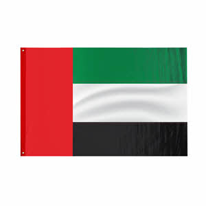 UAE Flag Large