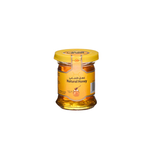 Shafi Natural Honey 80gm